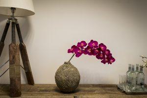 Bruidsorchidee